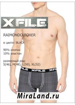X file raimondo boxer xxl