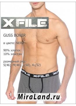 X file guss boxer