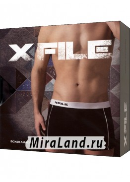 X file amadeo boxer xxl